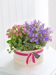 Summer Planted Hatbox